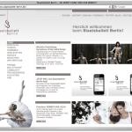 kulturserver_Kunde_Website_Screenshot_#8_Webillustration
